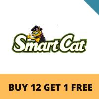 smart cat