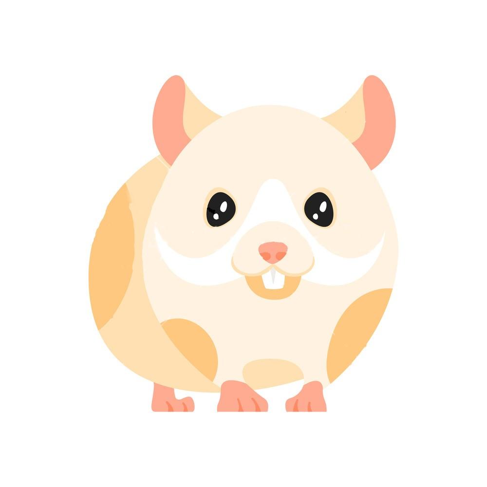 Small Pet