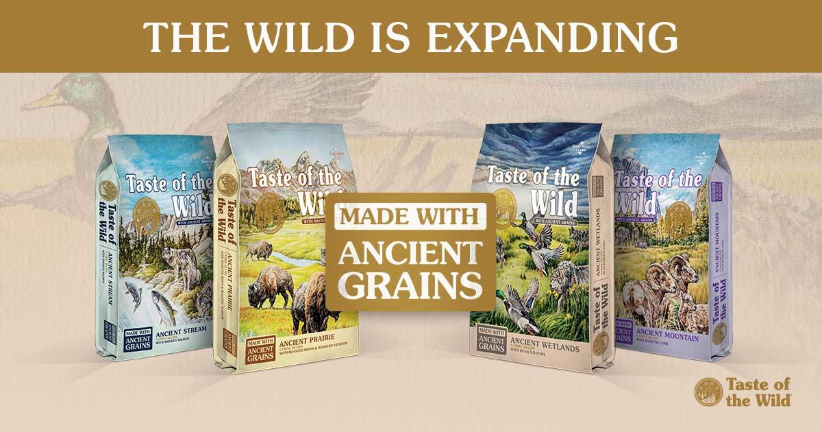 Taste of the Wild Ancient Grain In Stock!
