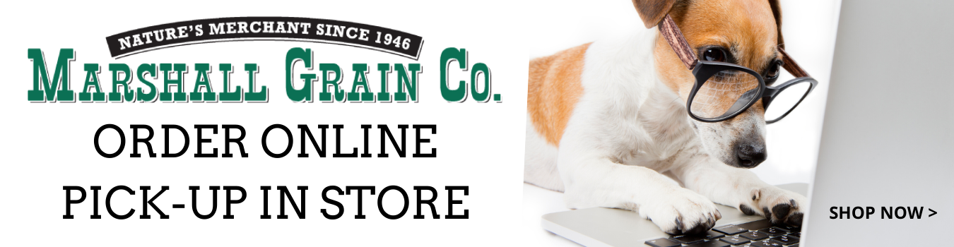 Order online and pick up in store today