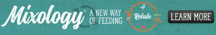A new way to feed your pet