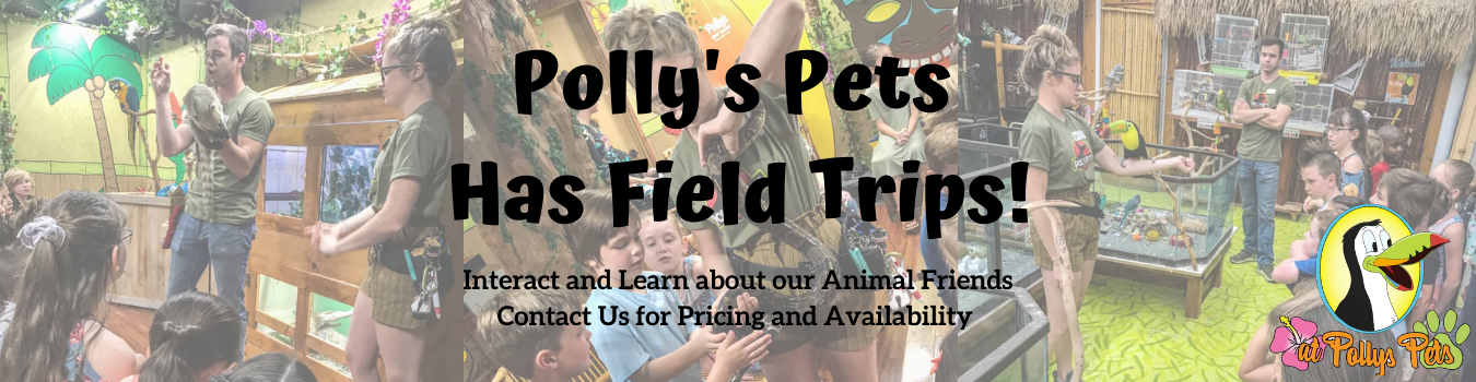 Polly's Field Trips