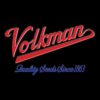 Volkman