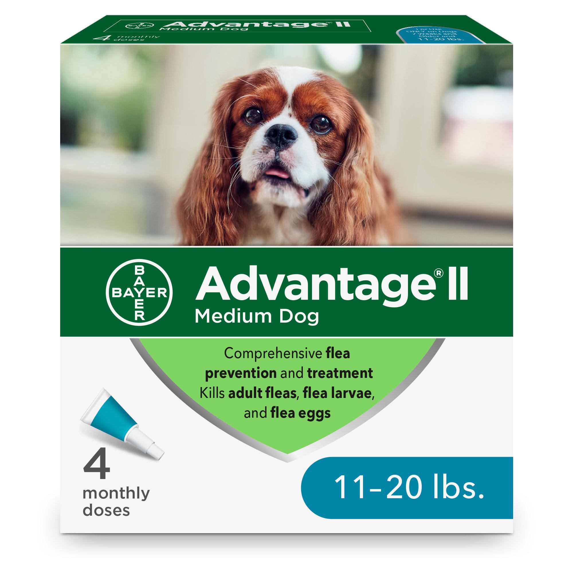 Advantage II Flea Treatment for Medium Dogs 11-20 lbs, 4-pack Image