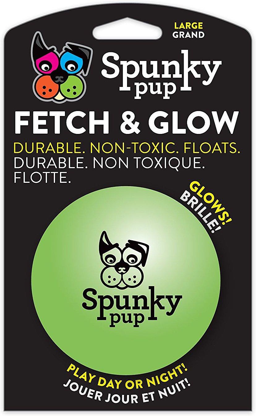 Spunky Pup Fetch & Glow Ball Dog Toy, Large