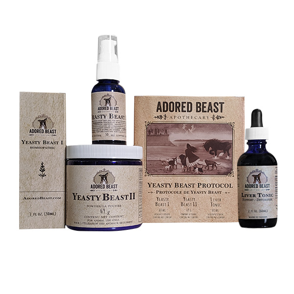 Adored Beast Yeasty Beast Protocol for Dogs