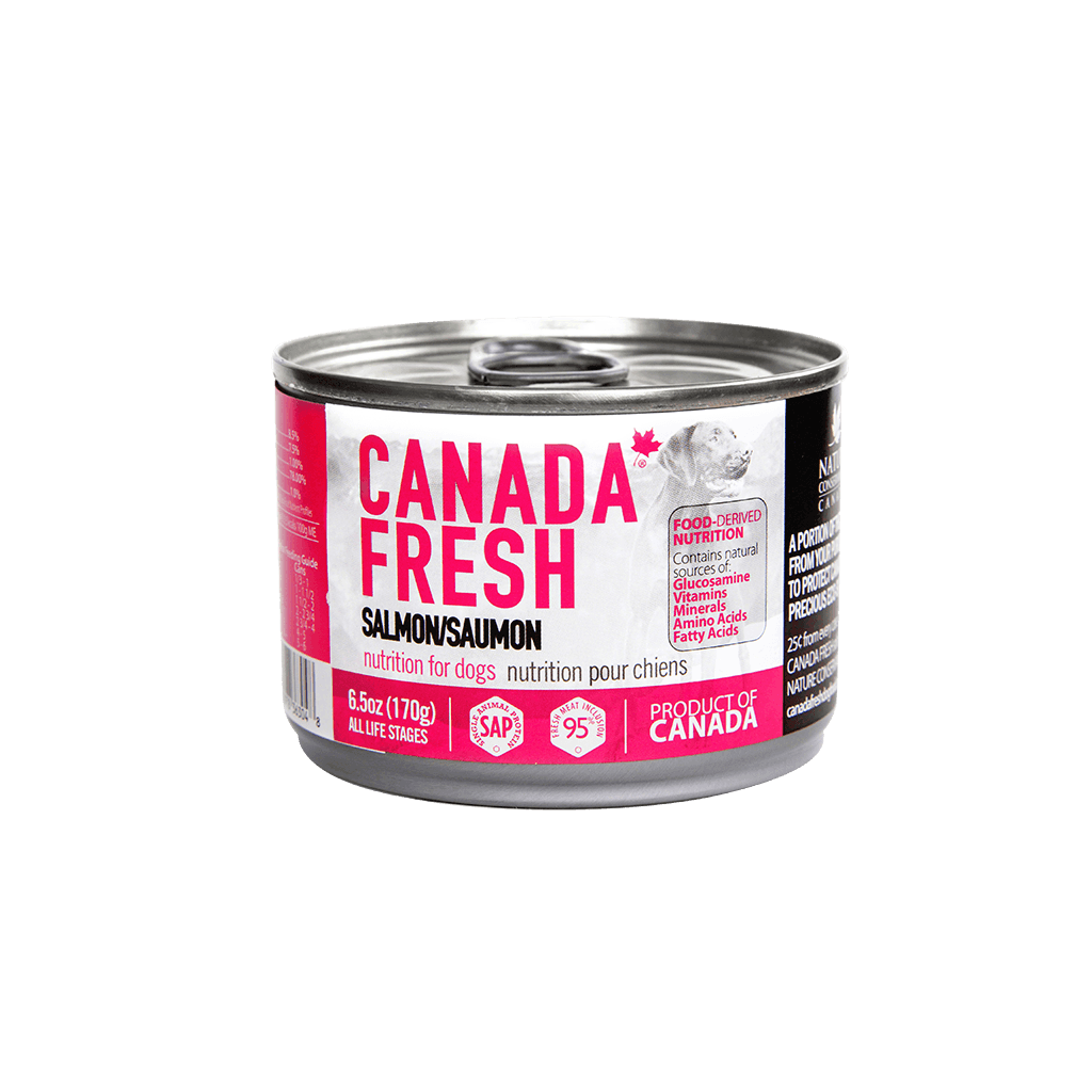 PetKind Canada Fresh Salmon Formula Wet Dog Food Image