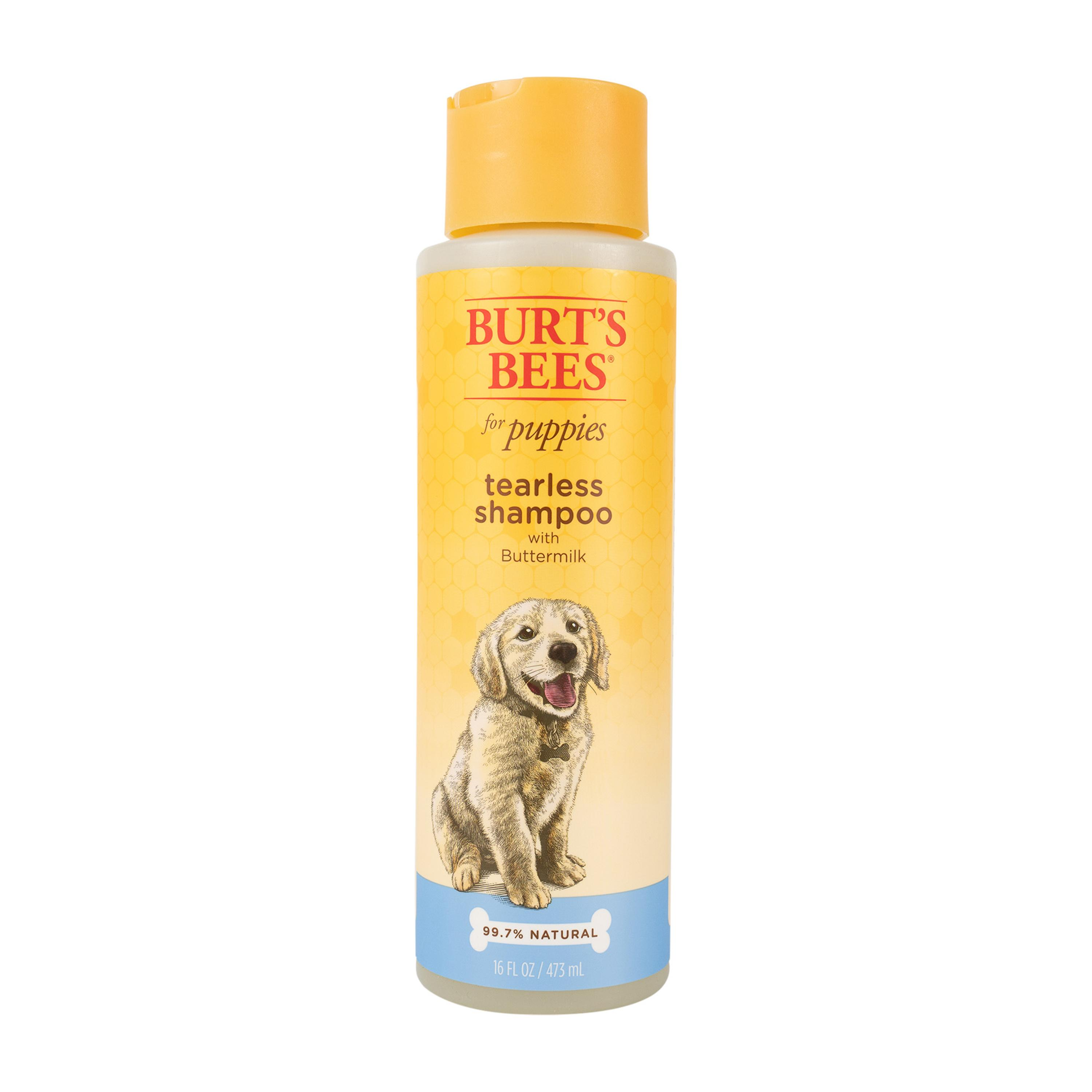 Burt's Bees Tearless Puppy Shampoo with Buttermilk for Dogs, 16-oz bottle (Size: 16-oz) Image