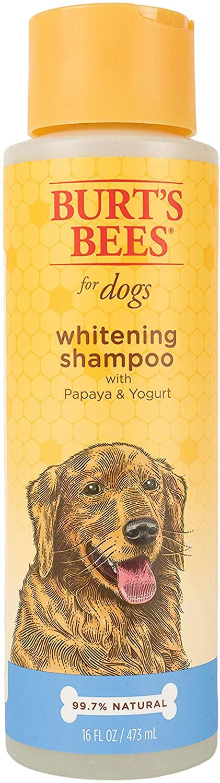 Burt's Bees Whitening Dog Shampoo, 16-oz bottle