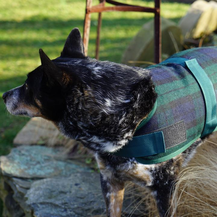 HuggleHounds HuggleWear Dog Jacket, Blackwatch Plaid Image