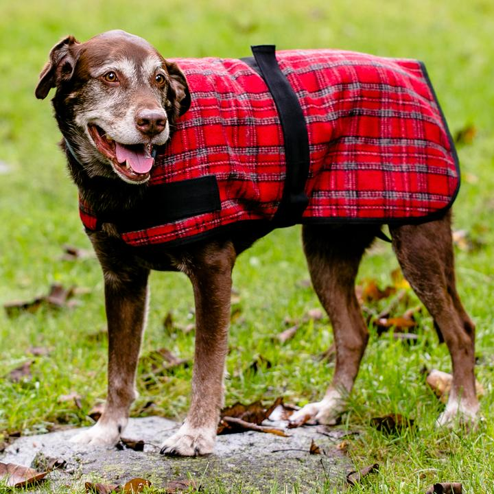 HuggleHounds HuggleWear Dog Jacket, Red & Gray Plaid, Small