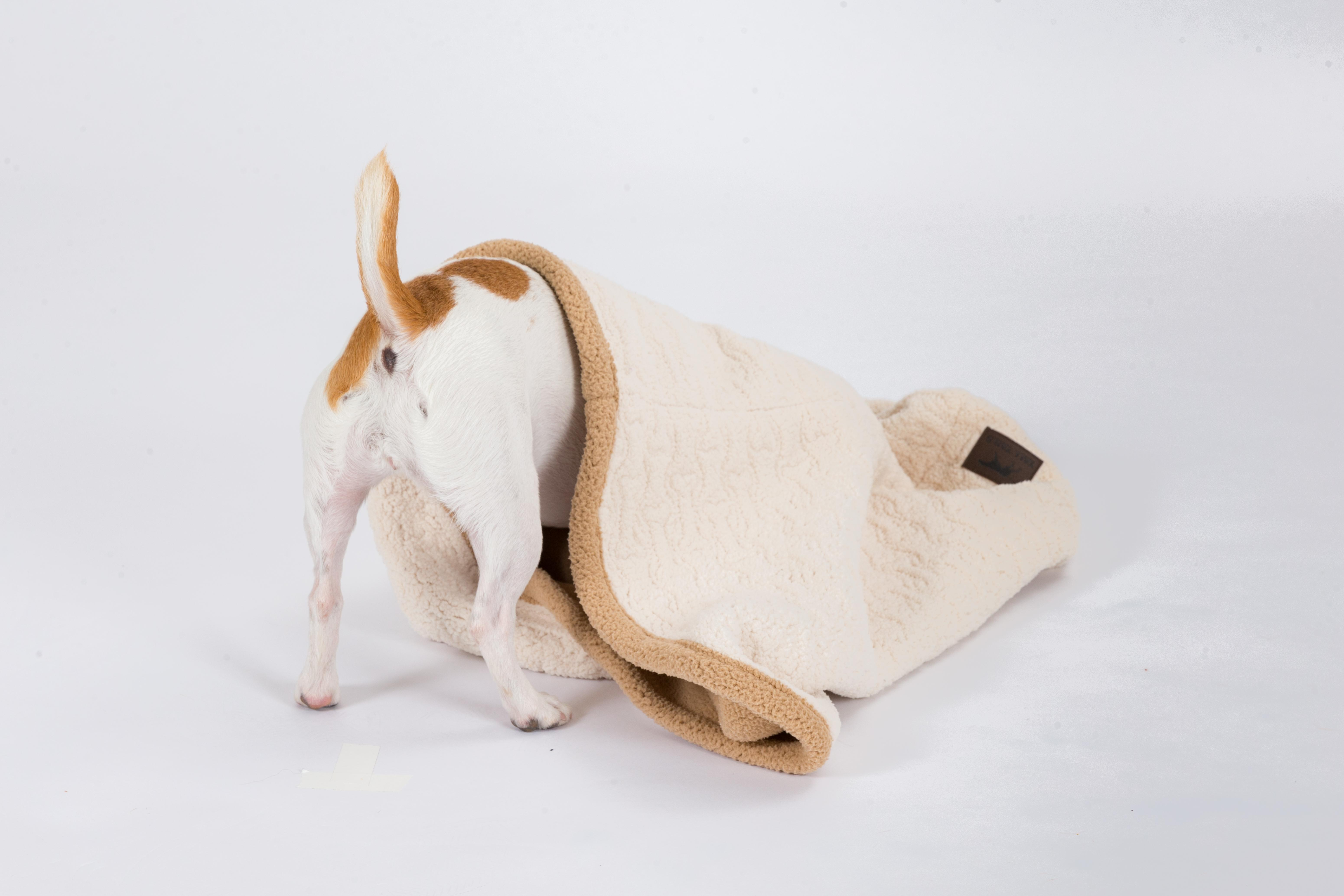Tall Tails 3-in-1 Cream Burrow Dog Bed Image