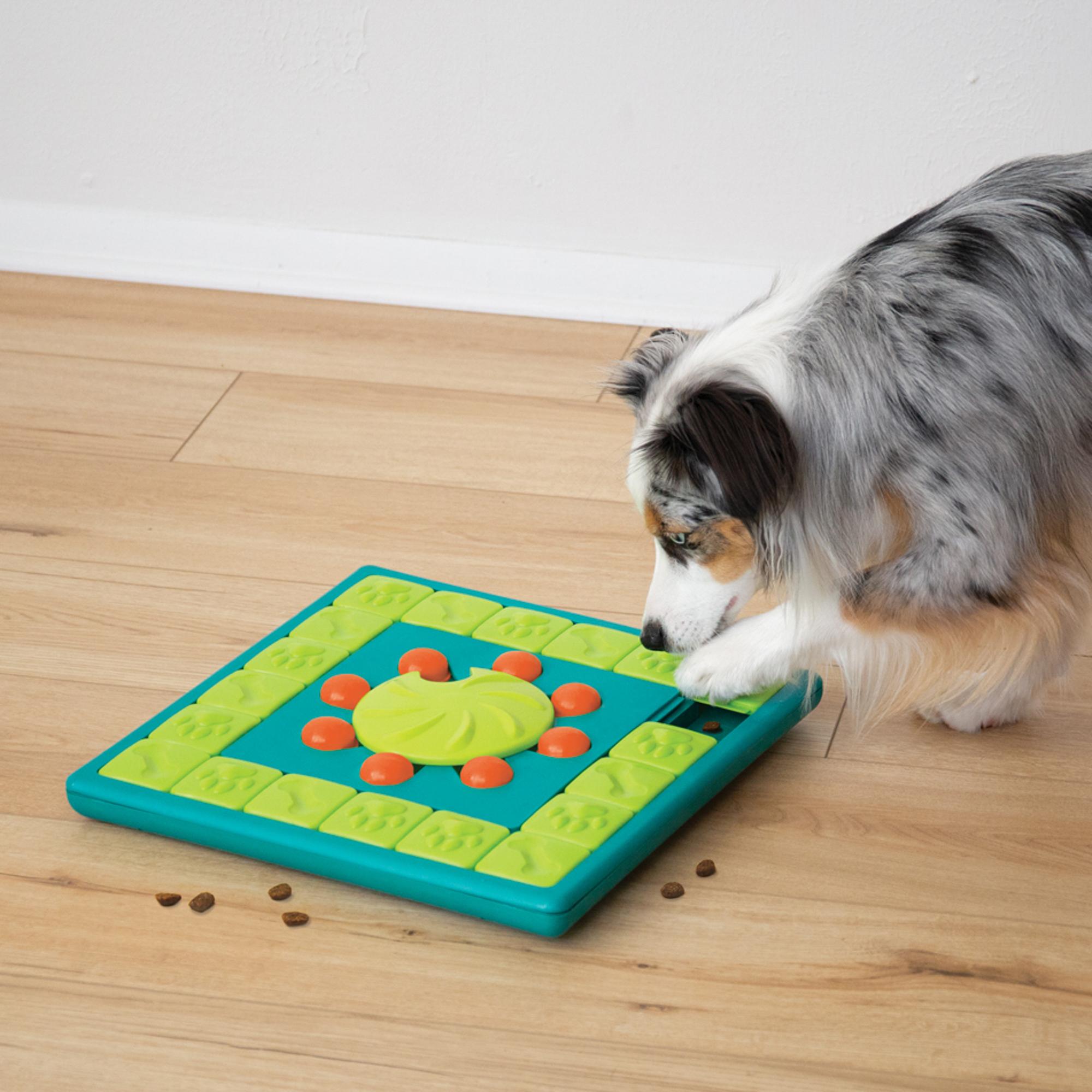 Outward Hound Nina Ottoson - Multi Puzzle Treat Dispensing Puzzle Dog Toy