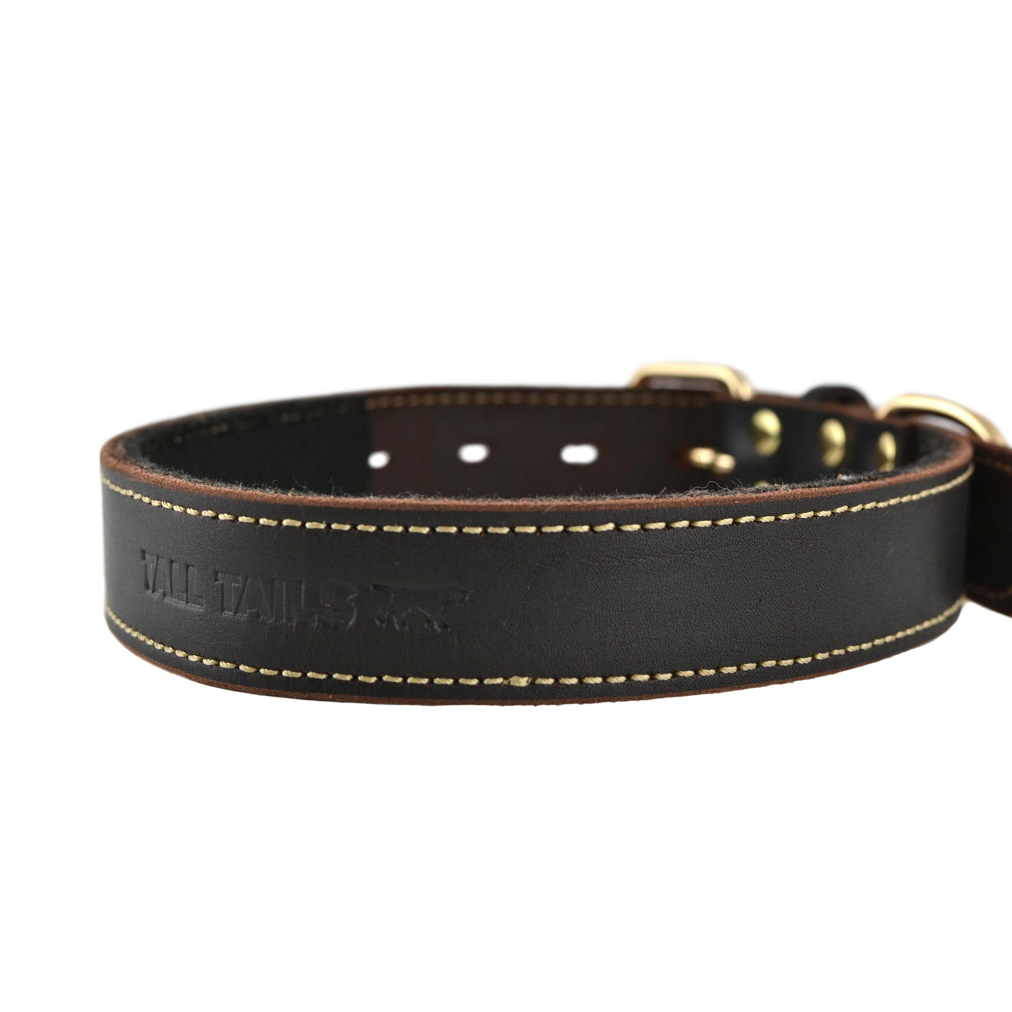 Tall Tails Genuine Leather Dog Collar, Large