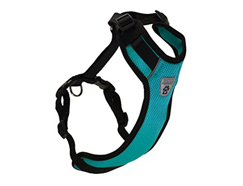 RC Pet Products Canine Friendly Vented Vest 2.0 Dog Harnesss, Teal, XX-Small