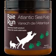 Baie Run Atlantic Sea Kelp Cat & Dog Suppliment Image