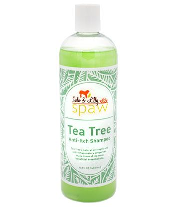 Solo & Lilly Spaw Tea Tree Anti-Itch Dog Shampoo, 16-oz