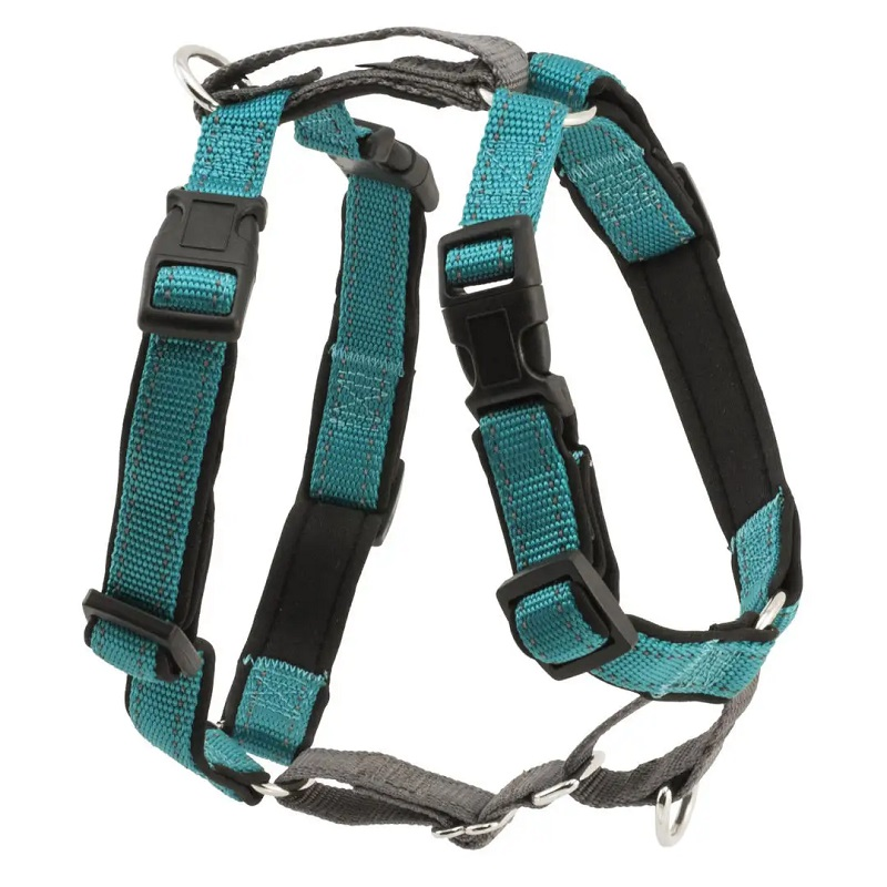 PetSafe 3 in 1 Dog Harness, Teal, Medium