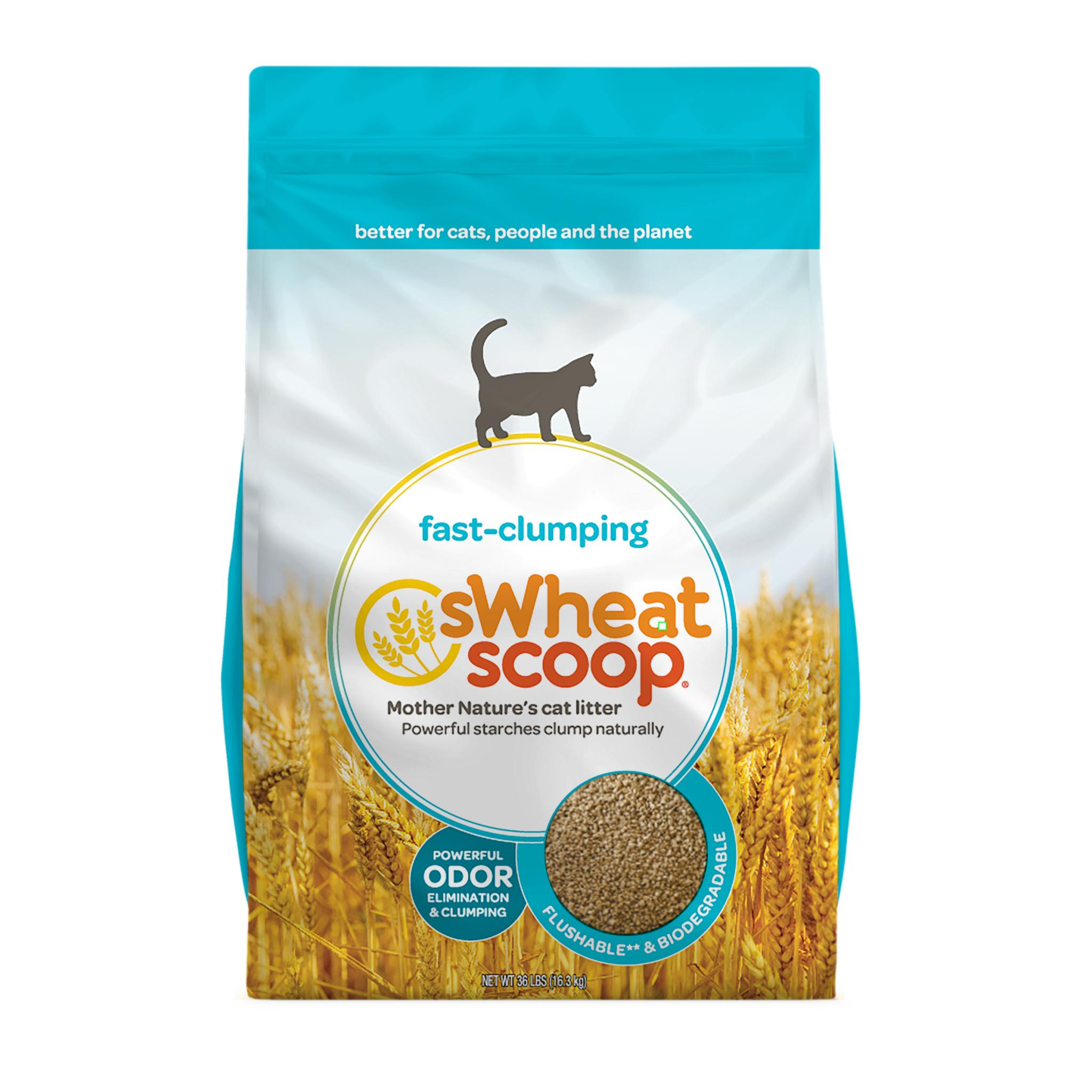 sWheat Scoop Natural Fast-Clumping Wheat Cat Litter, 36lb