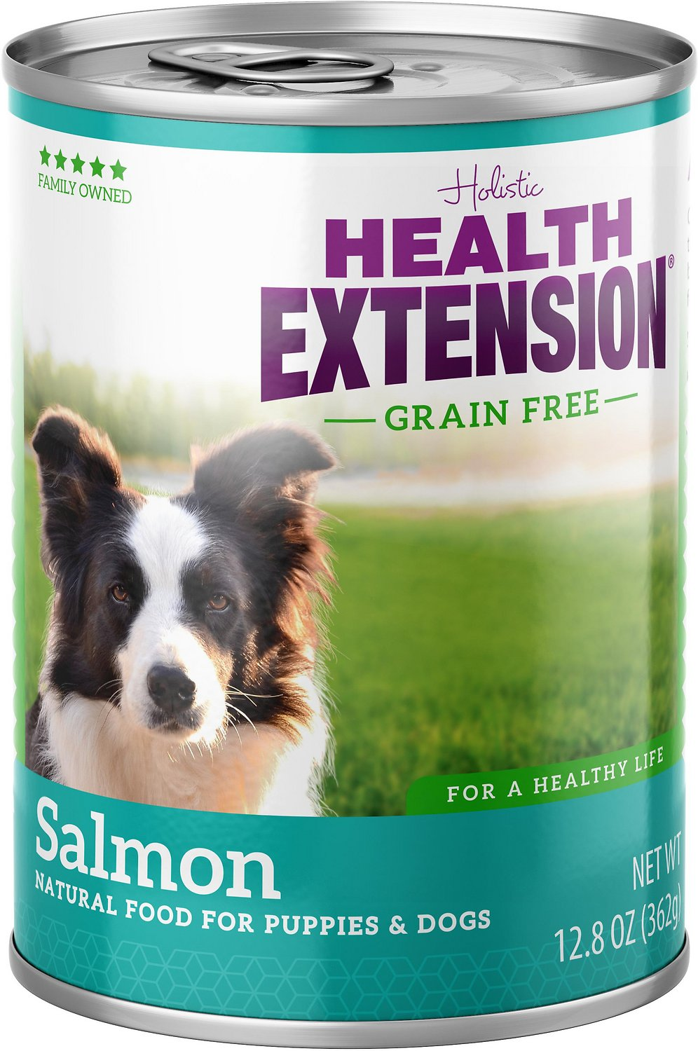 Health Extension Grain-Free Salmon Entree Canned Dog Food, 12.8-oz
