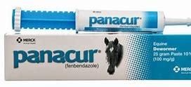 Merck Panacur Paste 10% Horse Supplement, 25-grams