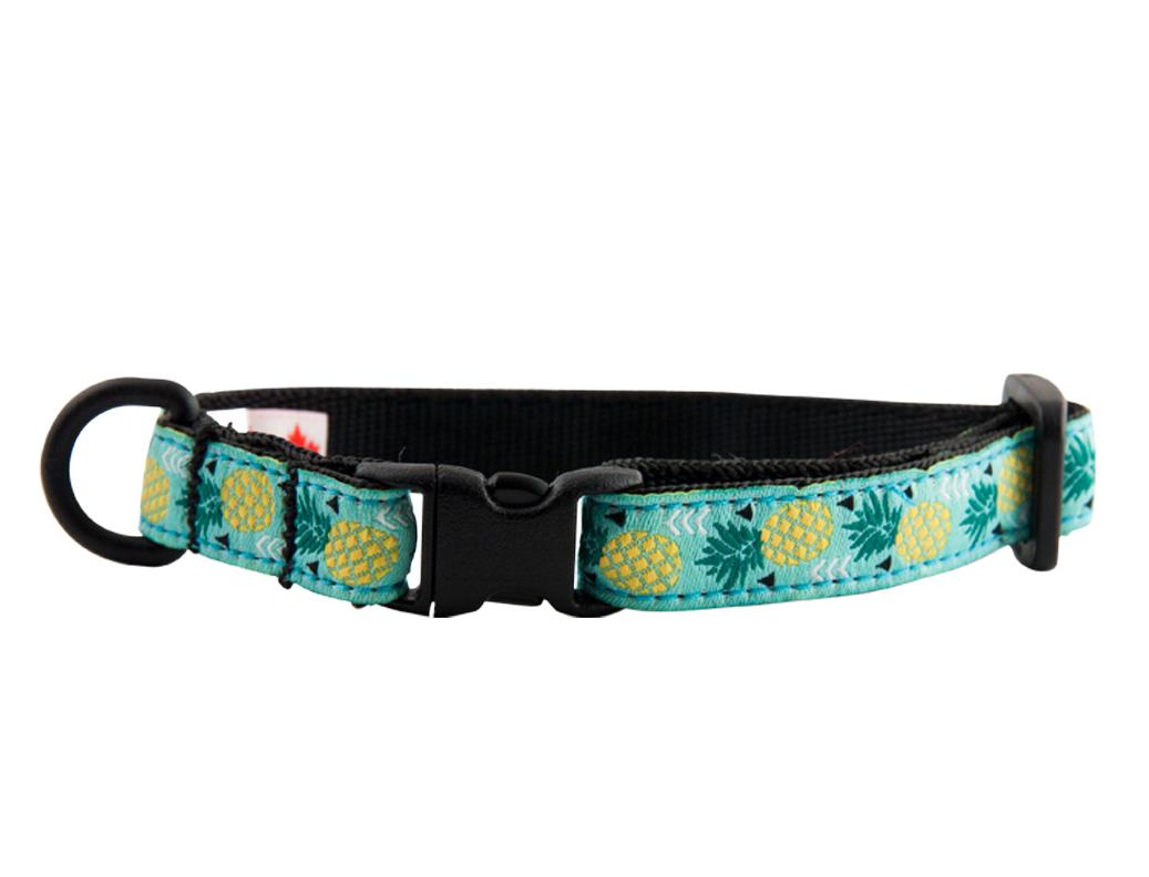 RC Pet Products Breakaway Cat Collar, Pineapple Parade