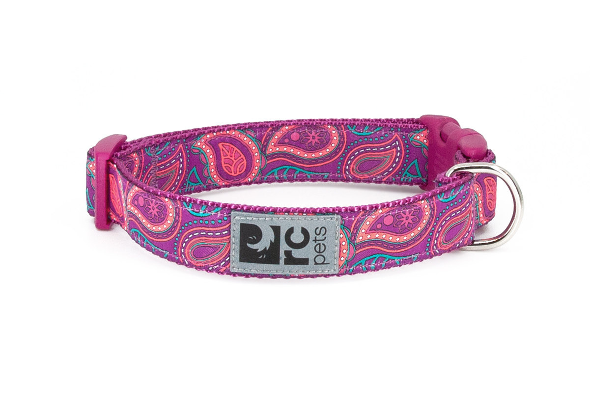 RC Pet Products Clip Dog Collar, Bright Paisley, Small