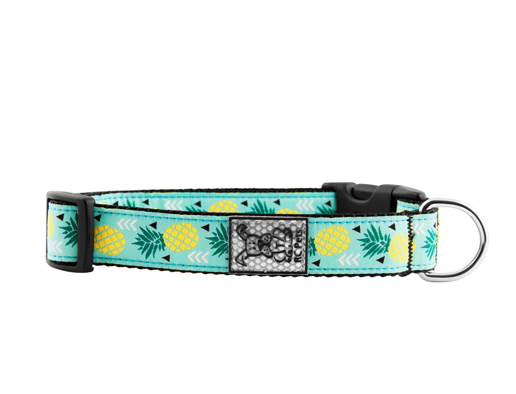 RC Pet Products Clip Dog Collar, Pineapple, Large