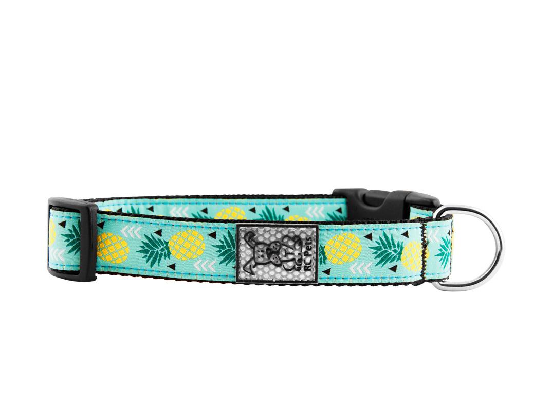 RC Pet Products Clip Dog Collar, Pineapple, Medium