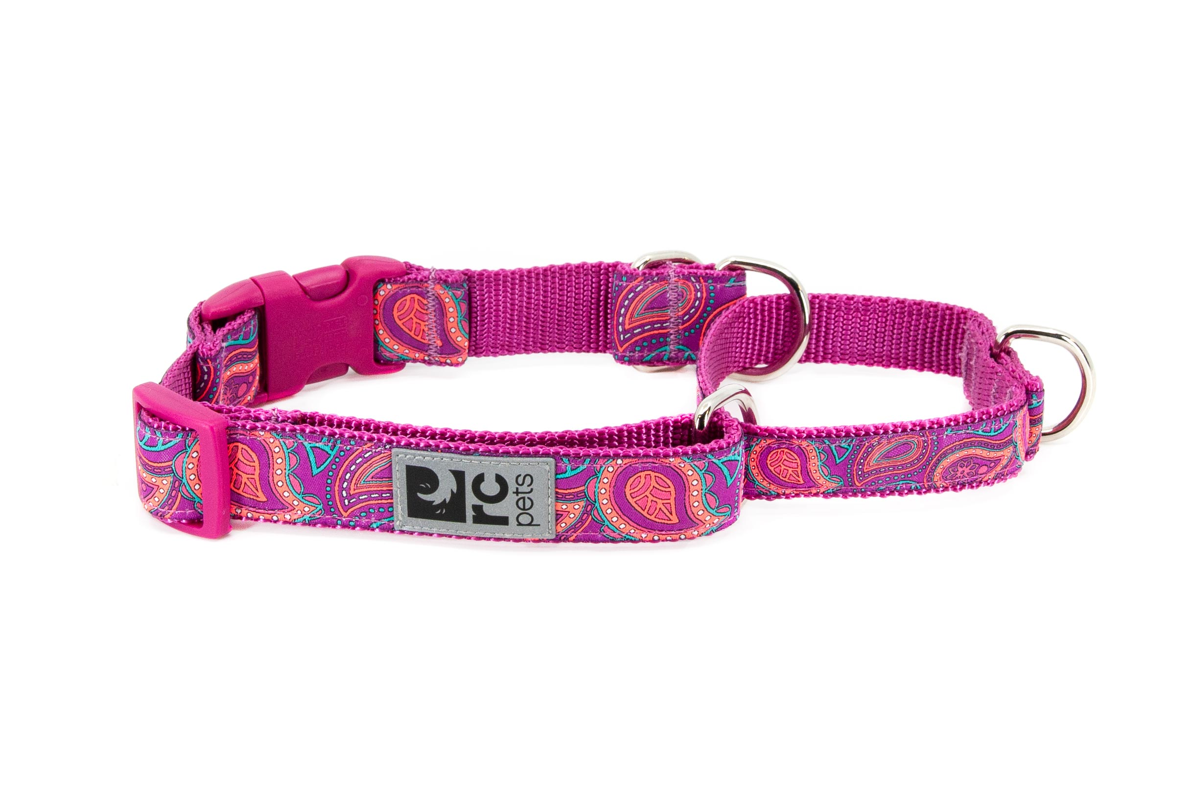 RC Pet Products Clip Web Training Dog Collar, Bright Paisley, Small