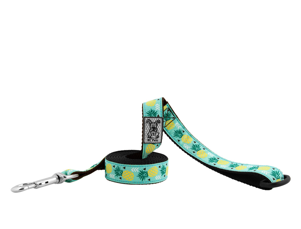 RC Pet Products Dog Lead, Pineapple, 1-in x 6-ft