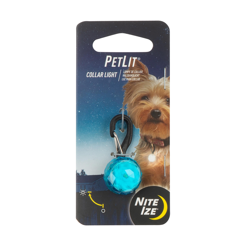 Nite Ize PetLit LED Light Dog Collar, Turquoise Jewel