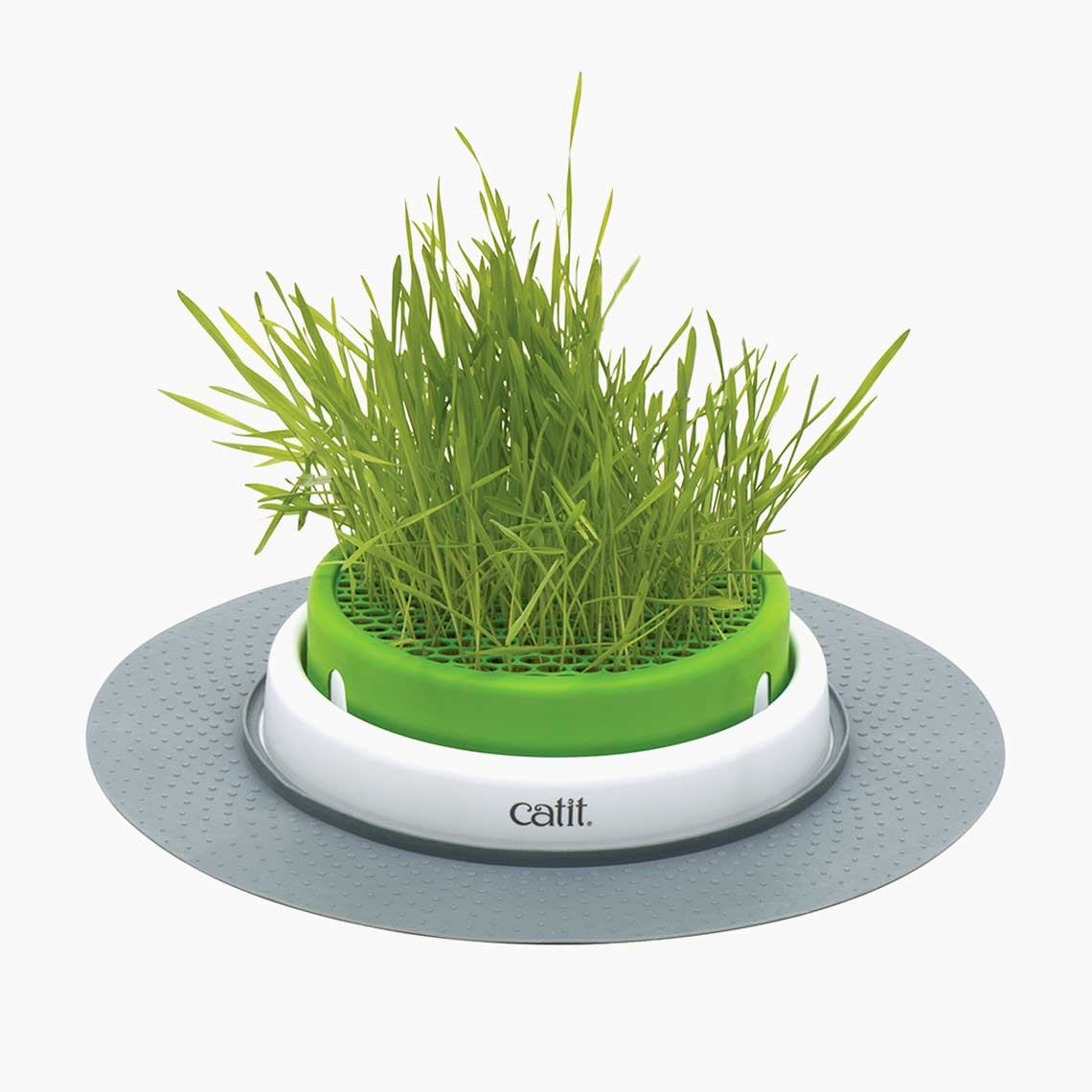 Catit Senses 2.0 Grass Planter Cat Toy Image
