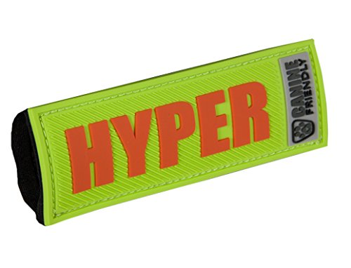 RC Pet Products Bark Notes Dog Collar Patch, Hyper, 1-in