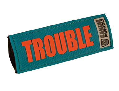 RC Pet Products Bark Notes Dog Collar Patch, Trouble, 3/4-in