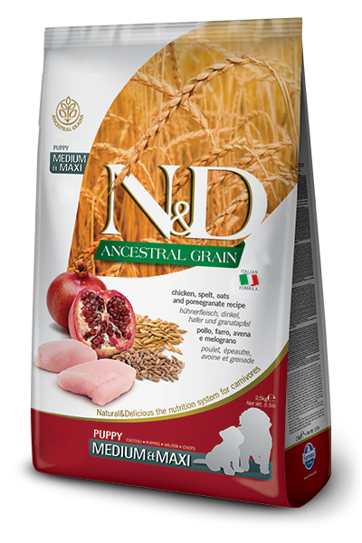 Farmina N&D Ancestral Grain Chicken & Pomegranate Medium & Maxi Puppy Dry Dog Food Image