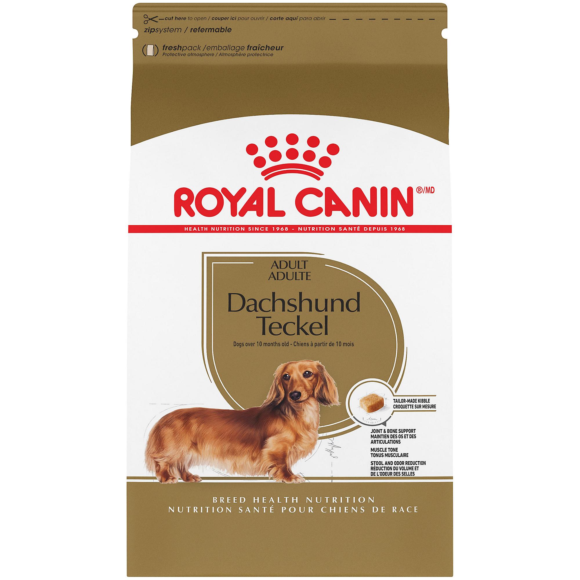 Royal Canin Breed Health Nutrition Dachshund Adult Dry Dog Food Image