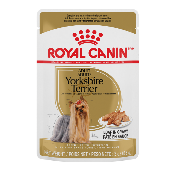 Royal Canin BHN Yorkshire Adult Loaf Pouch in Gravy Wet Dog Food, 85-gm