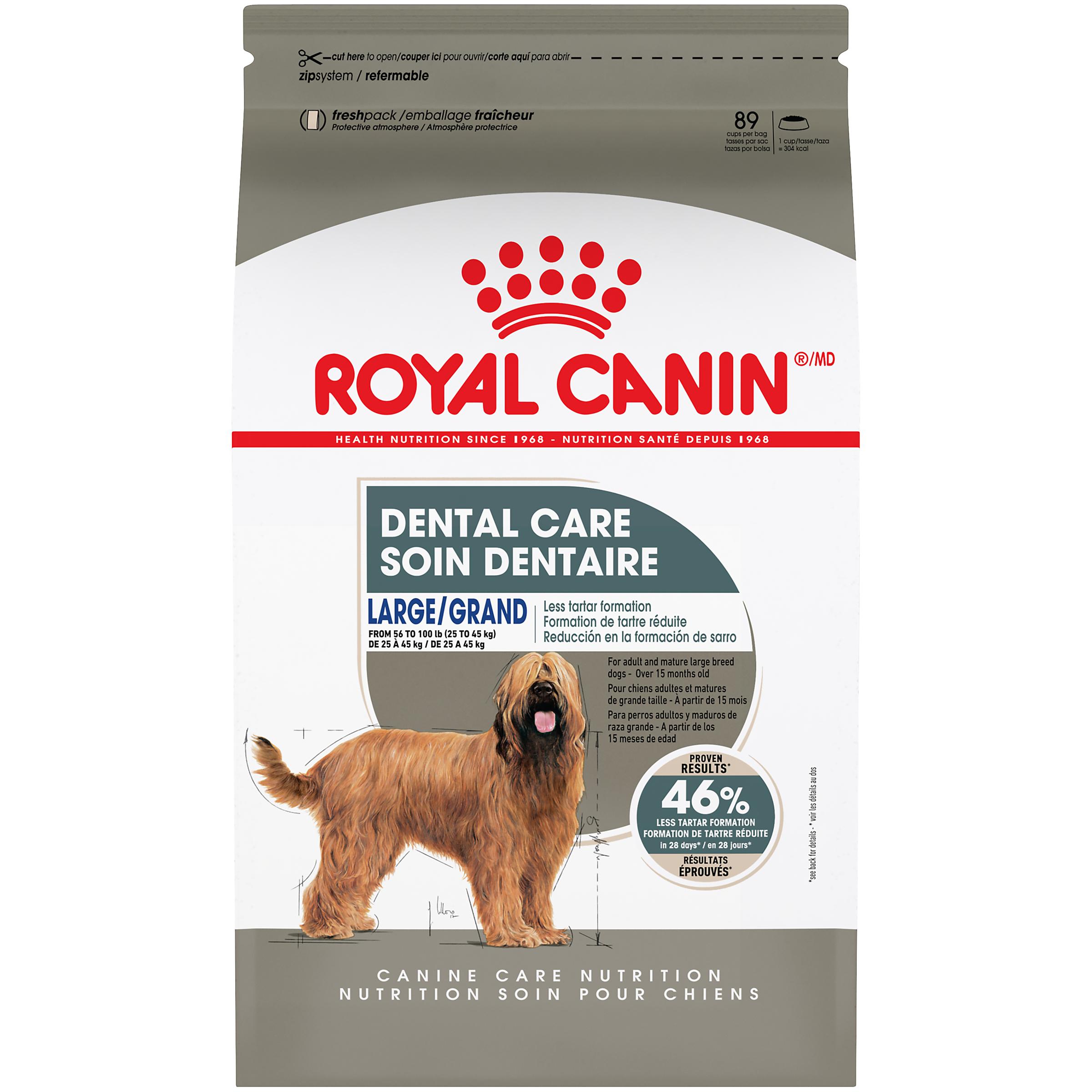 Royal Canin Canine Care Nutrition Large Dental Care Dry Dog Food Image