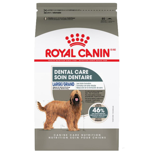 Royal Canin CCN Large Dental Care Dry Dog Food, 30-lb