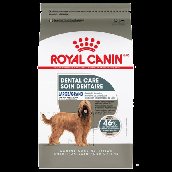 Royal Canin CCN Large Dental Care Dry Dog Food Image