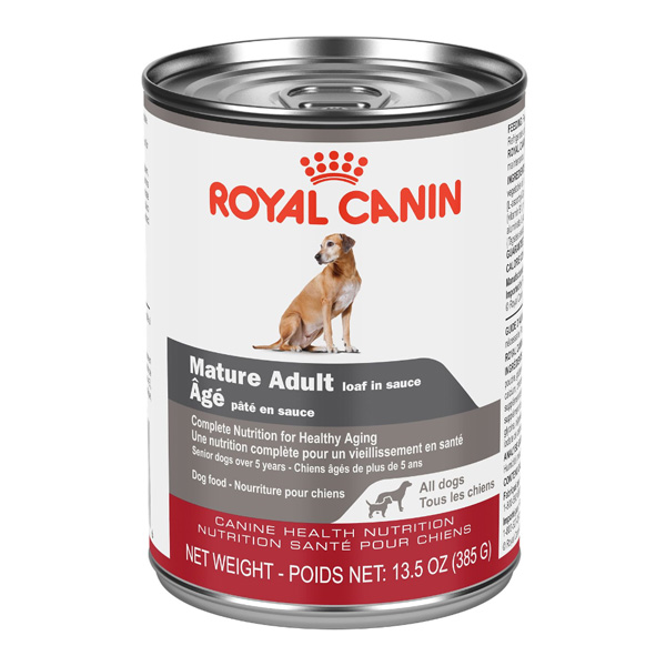 Royal Canin CHN Mature Adult Gel Canned Wet Dog Food, 385-gm