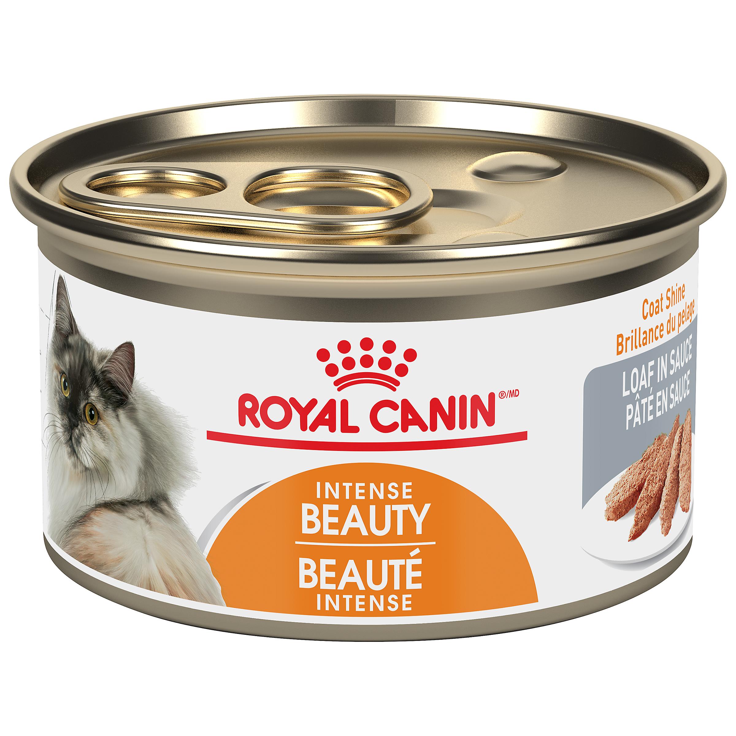 Royal Canin Feline Care Nutrition Intense Beauty Loaf in Gravy Wet Cat Food, 85-gm