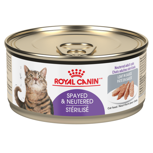 Royal Canin FHN Spayed Neutered Loaf in Gravy Wet Cat Food, 165-gm
