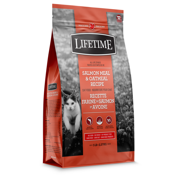 Lifetime ALS Salmon & Oatmeal Recipe Dry Cat Food, 2.27-kg
