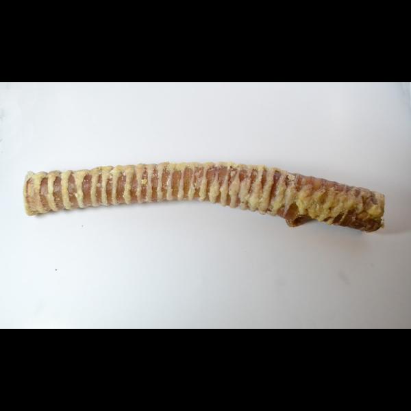 Open Range Beef Trachea Bully Stick Dog Treats, 12-in