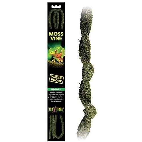 Exo Terra Bendable Moss Vine for Terrariums, Small