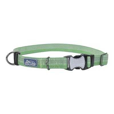 Coastal K9 Explorer Brights Reflective Adjustable Dog Collar, Meadow Image