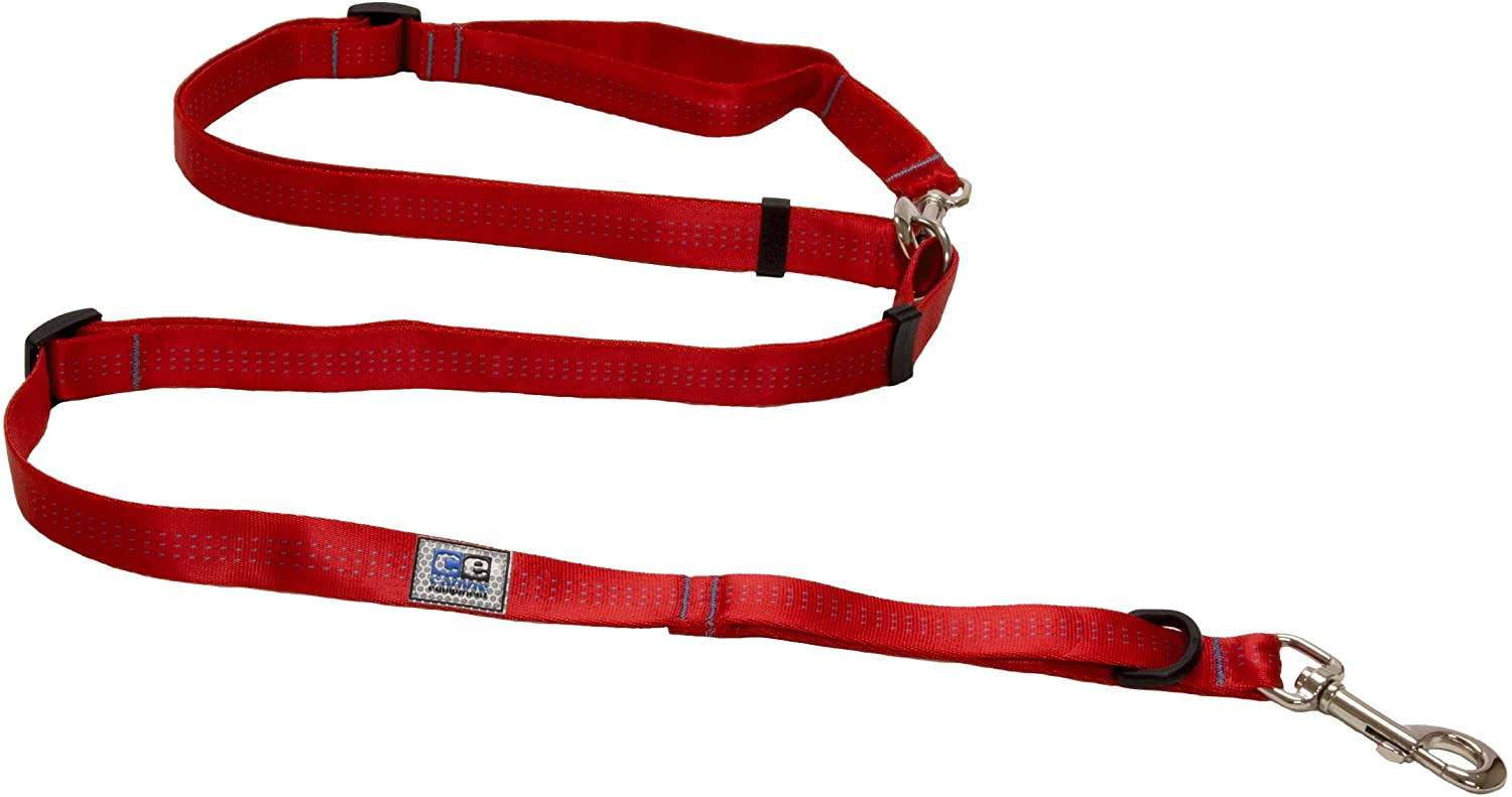 RC Pet Products Beyond Control Dog Leash, Red, 1-in