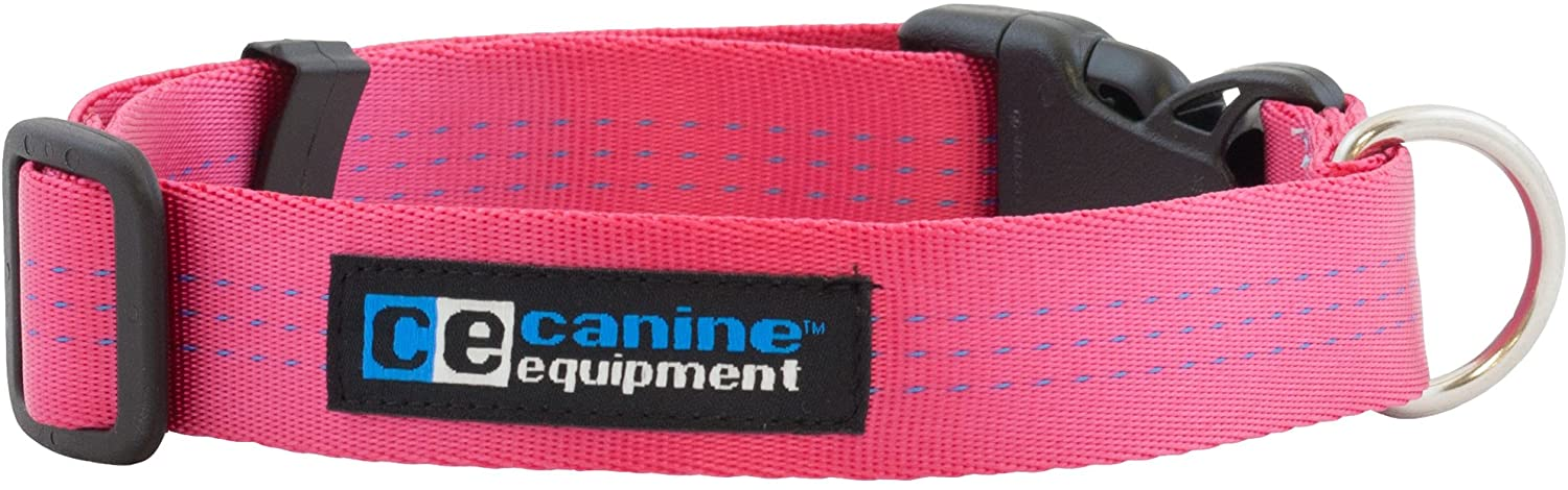 RC Pet Products Canine Equipment Technika Utility Dog Collar, Raspberry, 1-in x 16-22-in